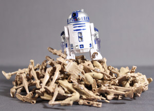 R2 27