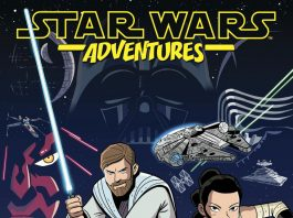 Sw Ashcan Cover