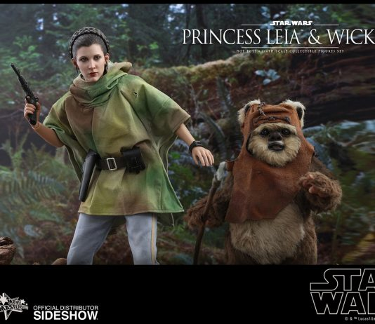 Princess Leia Wicket Star Wars Gallery 5d5708c7740c6